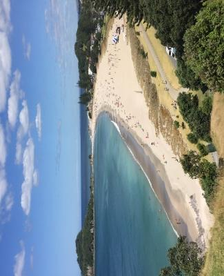 Mount Maunganui - nearly the view from the Millionleaves office!